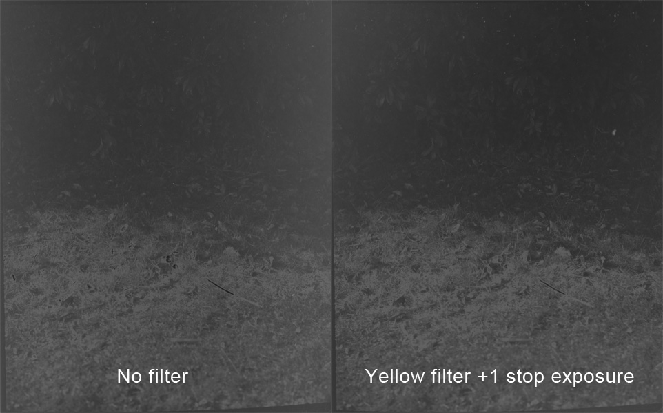 Second Yellow Comparison.jpg
